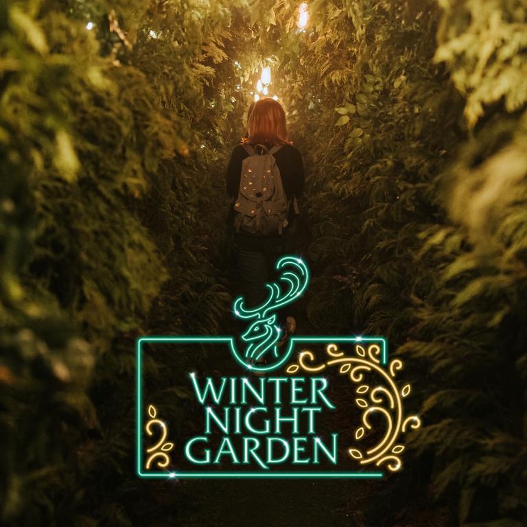 Winter Night Garden
